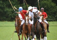 Emission TV ''Polo''